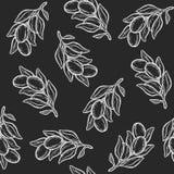 Картина орехового масла Argan безшовная Стоковые Фото