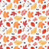 Картина осени акварели с красочными листьями и ягодами бесплатная иллюстрация