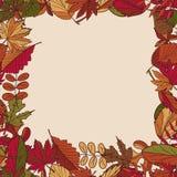 Картина осени картина листьев осени Красные, желтые и зеленые листья лесных деревьев рамка безшовная Польза как предпосылка t Стоковая Фотография