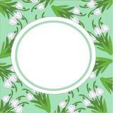 Картина открытки snowdrops на салатовой предпосылке Стоковое Изображение RF