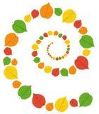 Картина от листьев осени Стоковые Фотографии RF