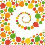 Картина от листьев осени Стоковая Фотография