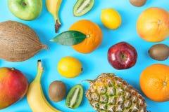 Картина от различных тропических и сезонных плодоовощей лета Бананы кивиа яблок лимонов апельсинов цитруса кокоса манго ананаса Стоковые Изображения RF