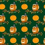 Картина официальный праздник в США в память первых колонистов Массачусетса безшовная с сычами на ветви дерева в костюме паломника Стоковые Фото