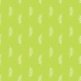 Картина оливковой ветки Стоковое Изображение