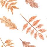 Картина падения осени акварели покрашенная рукой безшовная Стоковые Фото