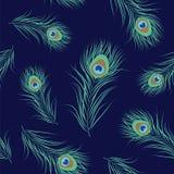 Картина пера павлина безшовная Стоковое Изображение