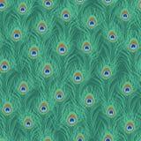 Картина пера павлина безшовная Стоковая Фотография RF