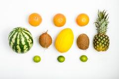 Картина плодоовощ ананаса, арбуза, кокоса, грейпфрута, lim Стоковые Фотографии RF