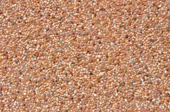 Картина пола terrazzo Стоковые Фотографии RF