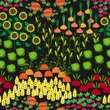 Картина полей безшовная Ландшафт сельского хозяйства шаржа Стоковое Изображение RF