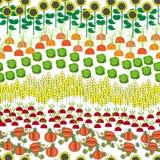 Картина полей безшовная Ландшафт сельского хозяйства шаржа Стоковые Фотографии RF