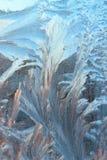 картина предпосылки морозная Стоковые Фото