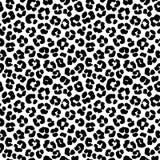 Картина предпосылки печати леопарда безшовная черная белизна иллюстрация штока