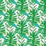 картина природы безшовная Вручите вычерченную абстрактную тропическую ладонь предпосылки лета, листья monstera в силуэте, линии и стоковое изображение rf