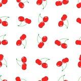 Картина притяжки руки вишни безшовная Handmade сочная предпосылка вишни Ягода вектора Стоковая Фотография RF