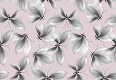Картина причудливой черно-белой бабочки безшовная Стоковое Изображение RF