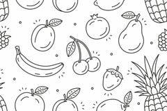 Картина плодоовощей Стоковое фото RF