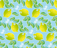 Картина плодоовощ лимона Стоковое Изображение
