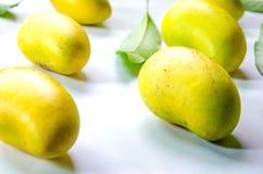 Картина плодоовощ манго и листьев манго Стоковая Фотография RF