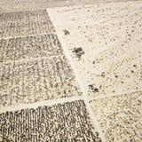 картина решетки пустыни Стоковые Фотографии RF
