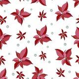Картина рождества безшовная с poinsettia и ягодами бесплатная иллюстрация