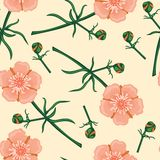 Картина розового цветка безшовная Стоковое Изображение RF