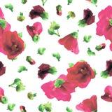 Картина розовых Hollyhocks безшовная - иллюстрация Стоковые Фотографии RF