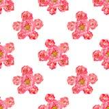 Картина Розы акварели безшовная Стоковое фото RF