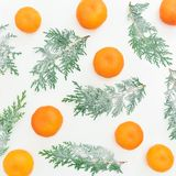 Картина сделанная из ветвей и цитрусовых фруктов ели на белой предпосылке Плоское положение Взгляд сверху Стоковое Изображение RF