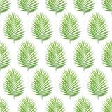 Картина силуэта лист ладони безшовная выходит тропическими Стоковое Изображение