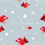 Картина смешного вектора рождества безшовная с кардиналами Стоковое Фото