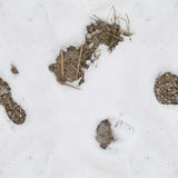 Картина снега и утеса для камуфлирования Стоковое Фото