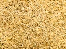 Картина соломы риса Взгляд сверху стоковые изображения