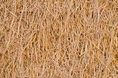 Картина соломы риса на поле Стоковые Изображения RF
