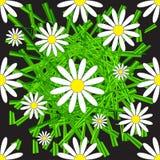 Картина стоцвета и травы безшовная Стоковое Фото