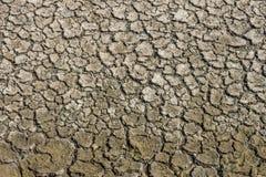 Картина сужения и высушивания трескает в сухой земле стоковое фото