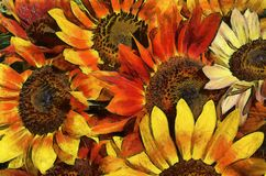 Картина сымитированная солнцецветом стоковое фото rf