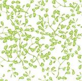 Картина с ветвью Стоковое Изображение RF