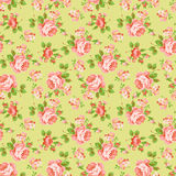 Картина с желтыми и розовыми розами Стоковые Фотографии RF