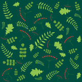Картина с листьями осени различных деревьев Illustrati вектора Стоковые Фото