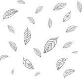 Картина с лист Стоковые Изображения RF
