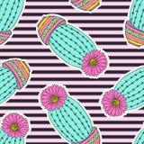 Картина с кактусами Стоковая Фотография