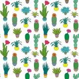 Картина с комнатным растением Стоковое Фото