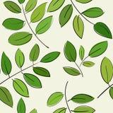 Картина с красивыми ветвями с зелеными листьями иллюстрация штока