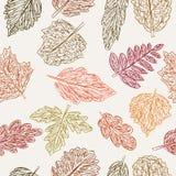 Картина с листьями Стоковая Фотография