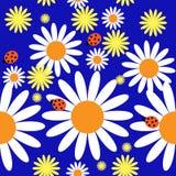 Картина с маргаритками и ladybirds бесплатная иллюстрация