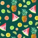 Картина с покрашенными плодоовощами акварели candied, ананасом, известкой и арбузом иллюстрация вектора