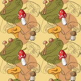 Картина с различными грибами Стоковое Фото