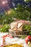 Картина с снежинками, подарок рождества рождества Стоковые Изображения
